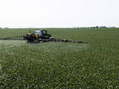 Glyphosate Use for Optimum Field Performance