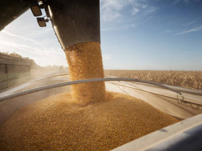 7 Management Practices for 300 bu/acre Yields in Corn
