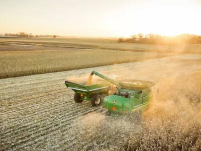 Timing Corn Harvest