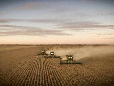 Understanding and Increasing Soybean Yields