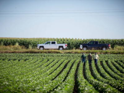 Achieving 100 bu/acre Yields in Soybeans