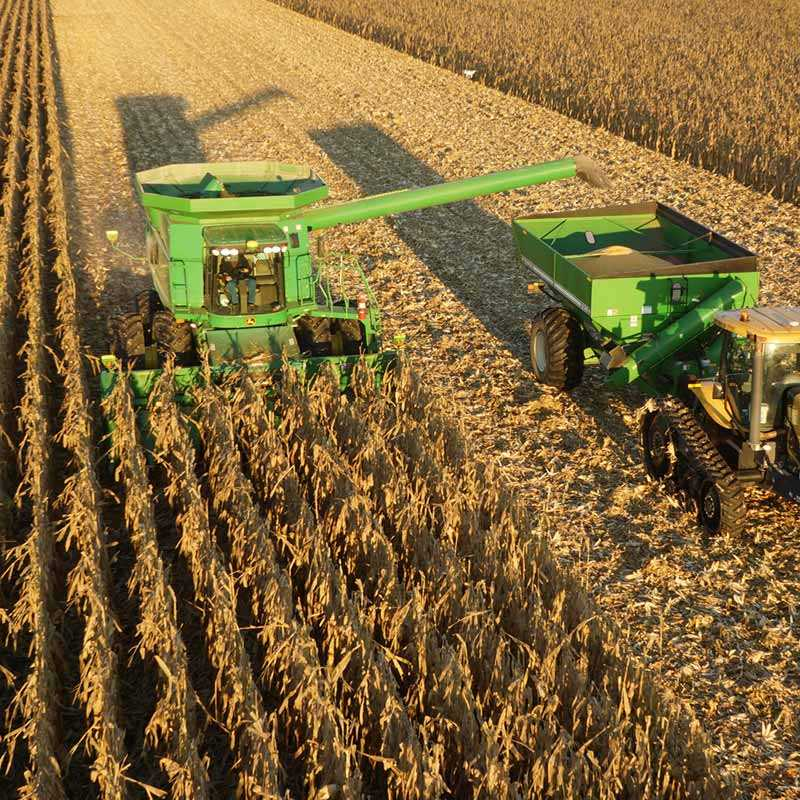 Harvest corn iowa
