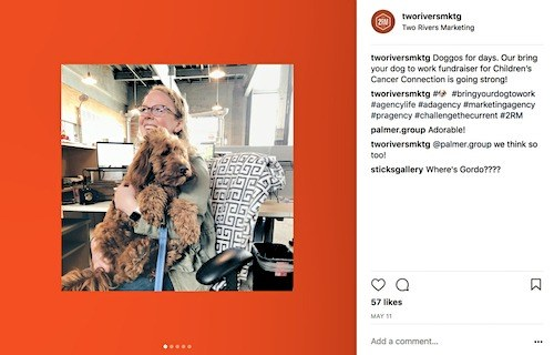 Screen grab of Two Rivers Marketing instagram post of associate holding dog for bring your dog to work month