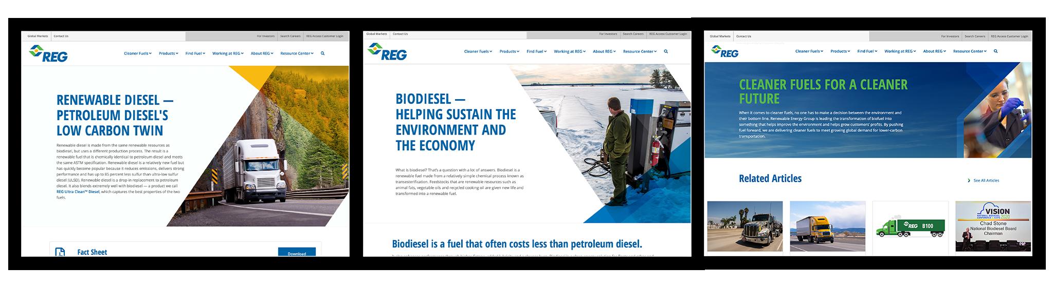 REG Website Screen Captures