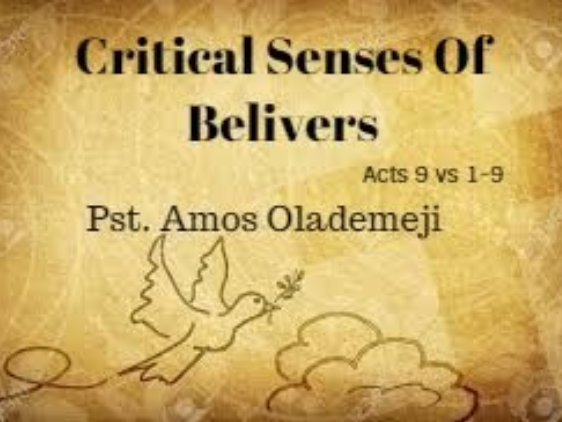 Critical senses of belivers