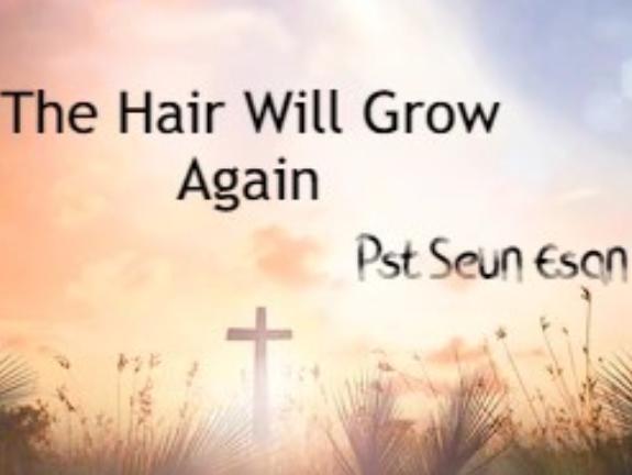 The Hair Will Grow Again