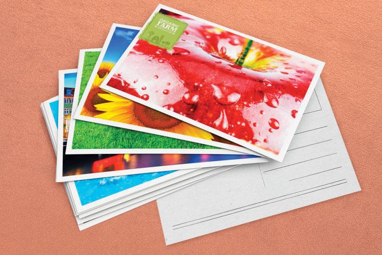 https://storage.googleapis.com/4over4-shop/assets/SEO/1189/foil-stamped-postcards-1.jpg