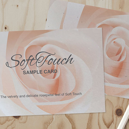 Soft Touch Postcards