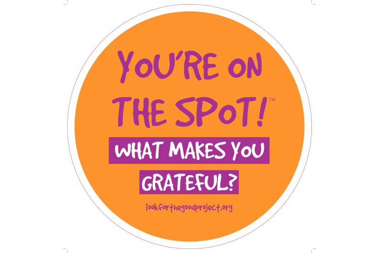 Look For The Good Gratitude Spots