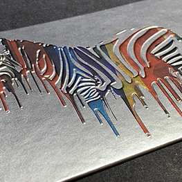 Silk Laminated Aluminum Foil Business Cards