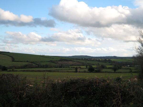 At Shrule, Craanford, Gorey, Co. Wexford