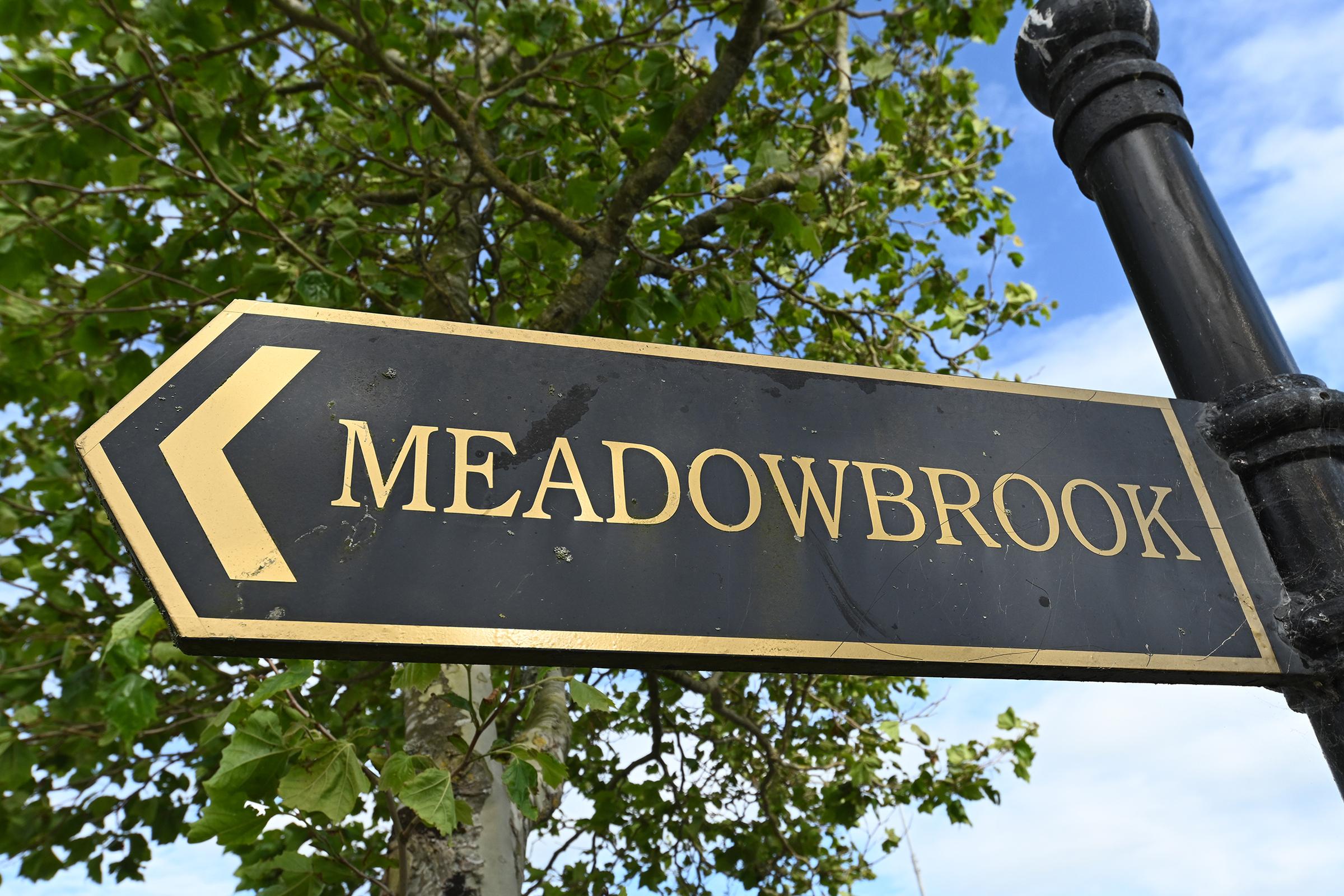 1 Meadowbrook, Herons Wood, Carrigaline, Co. Cork