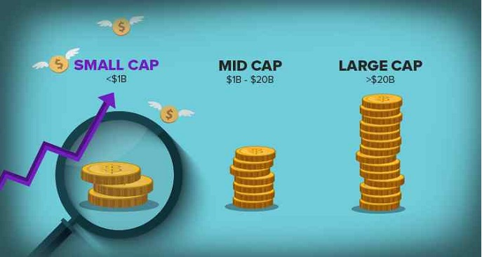 Top 5 gainers and losers in the Midcap and Smallcap segments during this week.
