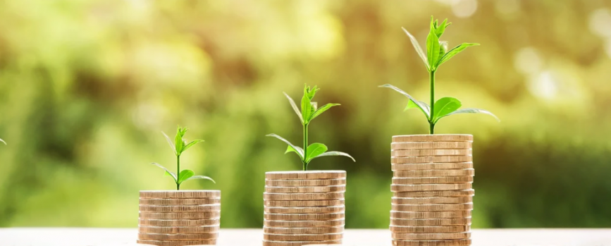 Which is the better investment option: PPF or mutual funds?