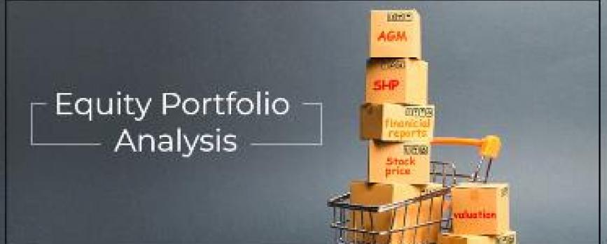 How can an investor track his equity (stock) portfolio?