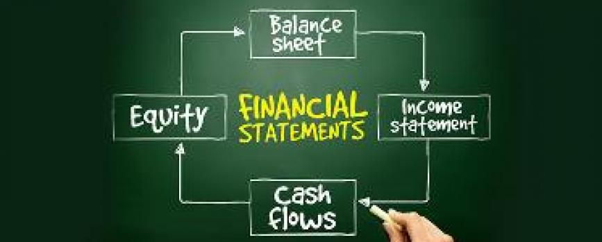 Do You Look at Red Flags While Studying the Financial Statements?