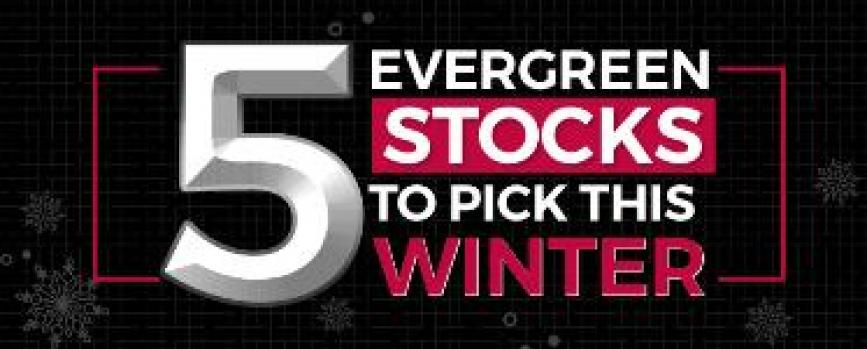 5 Evergreen Stocks to pick this Winter