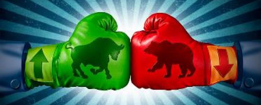 Portfolio adjustments in bull and bear markets