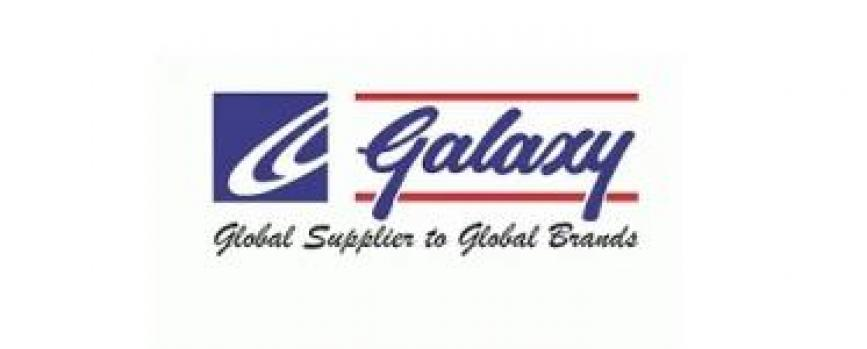 Galaxy Surfactants Limited IPO Note