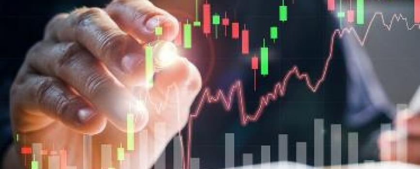What are NSE Top Gainers and NSE Top Losers?