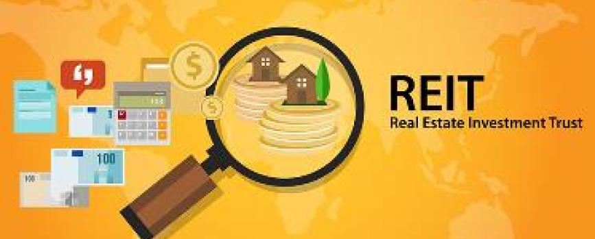 What are REITs and should you invest in them?