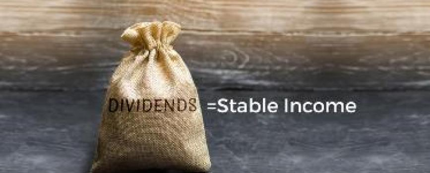 Do You Own High Dividend Paying Stocks?