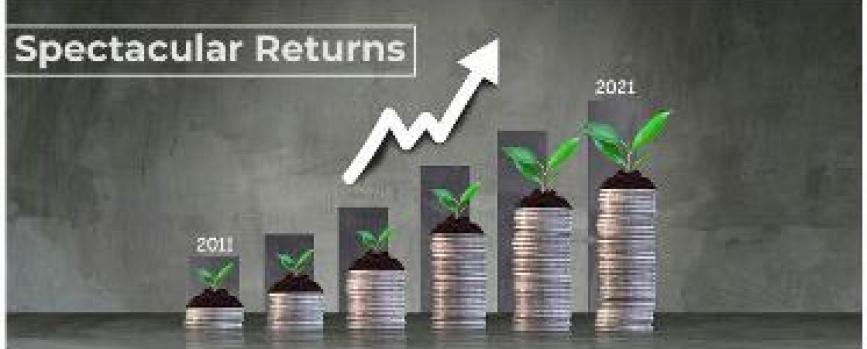 Which are the stocks that generated magnificent returns in the past 10 years?