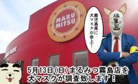 【5/13(日)】まるみつ霧島店の週末『5月13日』はどうなんだ!?犬マスクが突撃~!