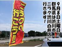 【9月8日(土)】9月も調査実施!ニラク渋川白井店の9月8日はどうなんだ?