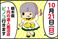 【10/21(日)】栃木県「1円の達人鹿沼店」をピノコが調査!