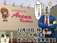 【12/10(月)】12月も密着調査!アリーナ柏店の『12月10日』はどうなんだ!?