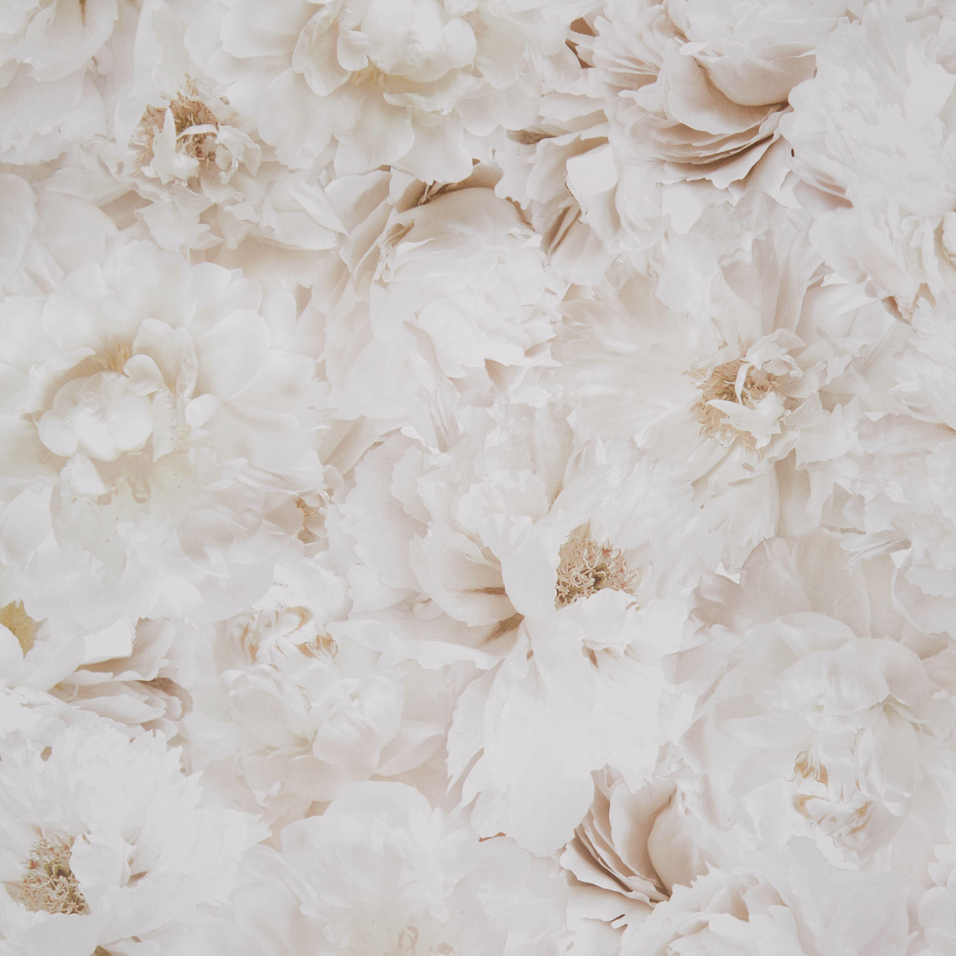 Graham Brown Fresco Cream Floral Wallpaper