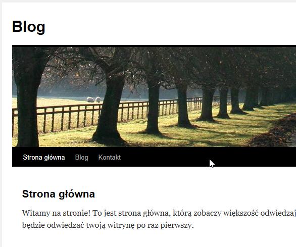 wordpress strona główna