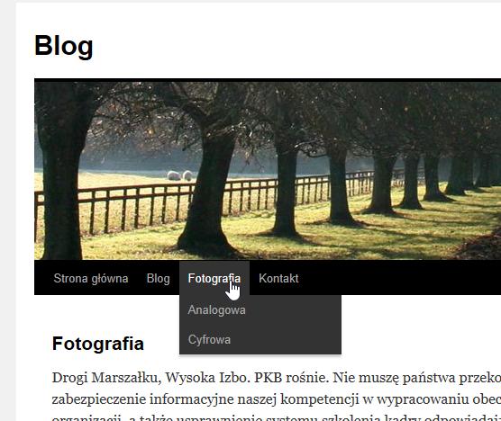 wordpress strona z rozwiniętym menu