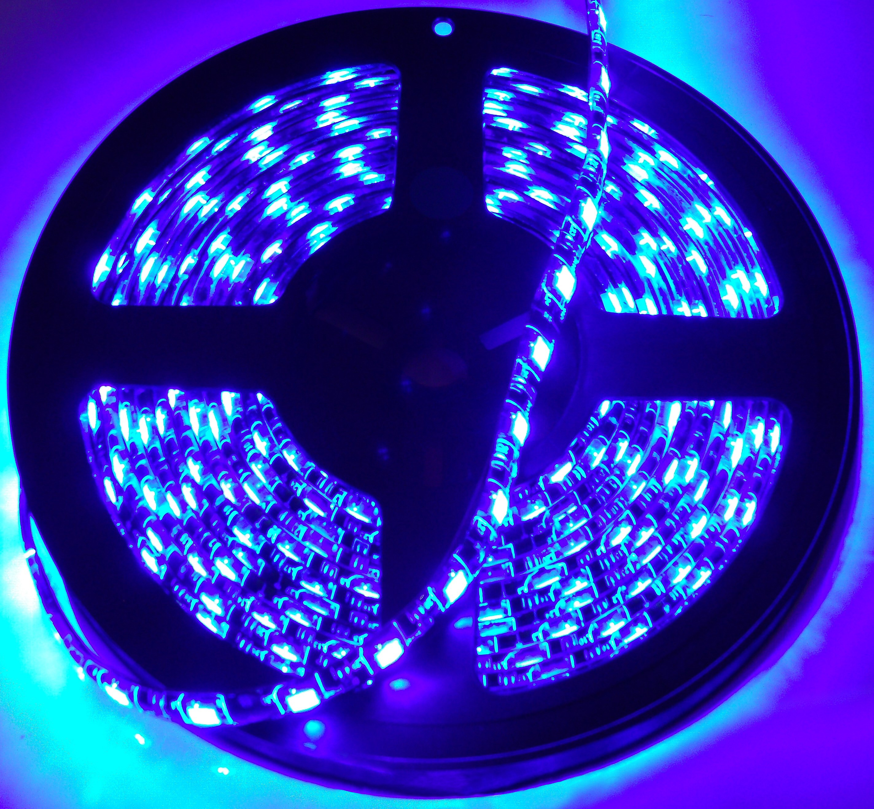 Race Sport Lighting RS-3528-1MB 3ft (1M) LED Strip (Blue)