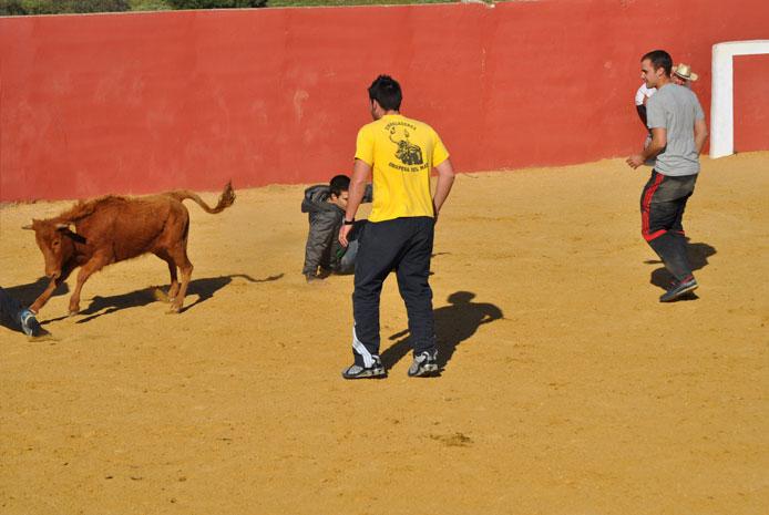Actividades con capea para despedidas en Salamanca