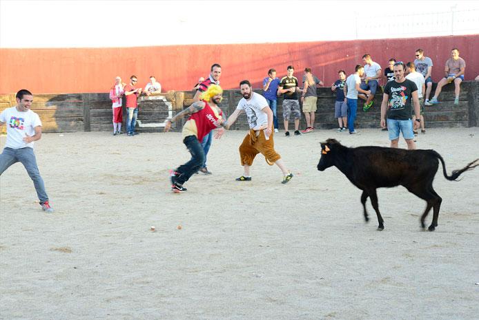Actividades con capea en Salamanca