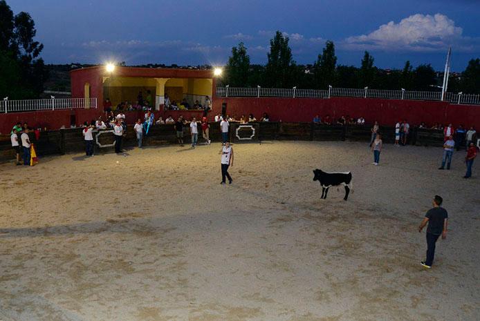 complejo para capeas Madrid