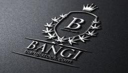BANGI, Inc.