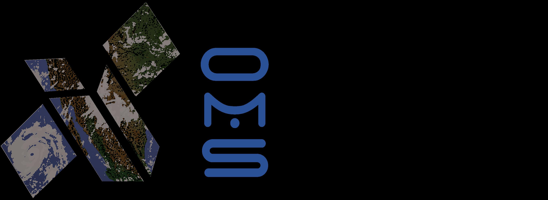 Orbital Micro Systems Inc