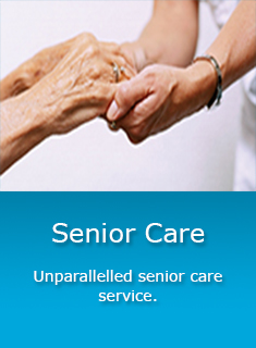 Essay about service old age homes