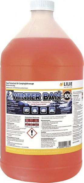 Frostschutzmittel Winter Ban 3,78 l