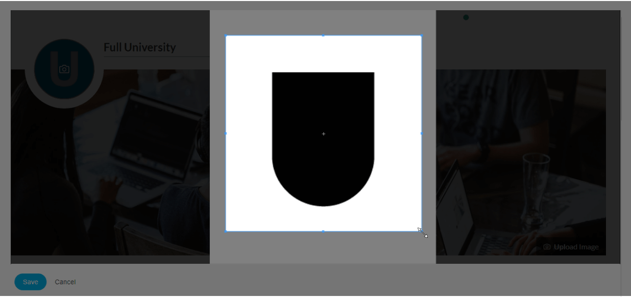 Crop the picture before saving it as the AdaptiveU university picture on the landing page.