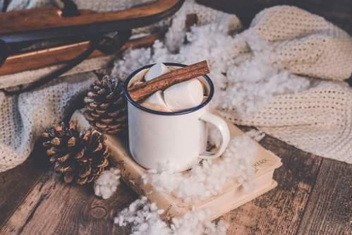 Romantica foto con tazza pigne e cotone effetto neve