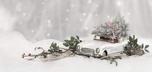 Chevrolet tra neve rami e pigne