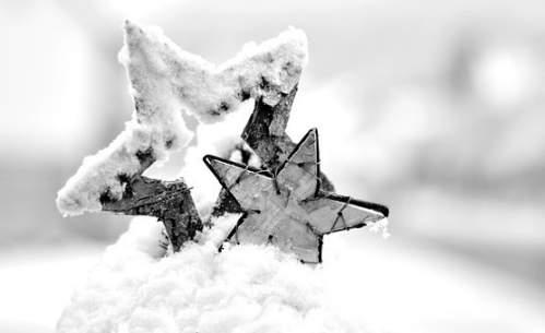 Addobbi Natalizi effetto neve con stelle