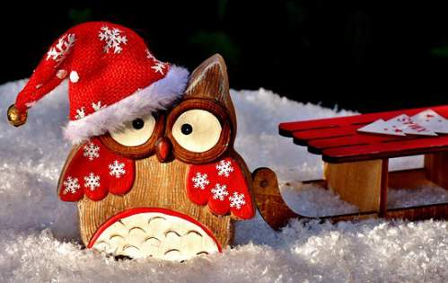 Addobbi natalizi innevati con gufetto e slitta da neve