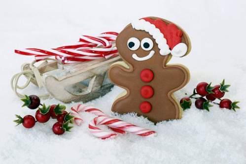 Slitta bacche e dolci natalizi immersi nella neve