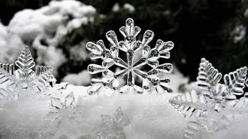 Stelle di cristallo su neve