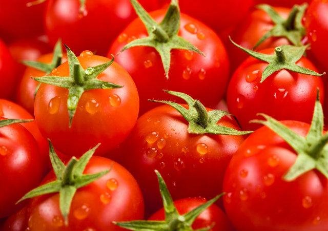 Brasileiros contrabandeiam tomates da Argentina